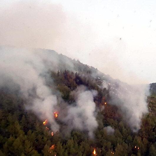 Suriye'nin Türkiye sınırında çıkan orman yangını söndü