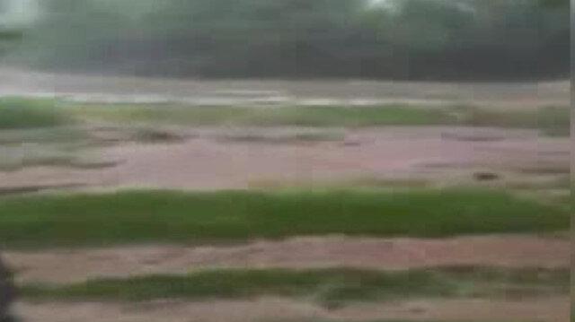 Nallıhanda tarım arazilerini sel vurdu