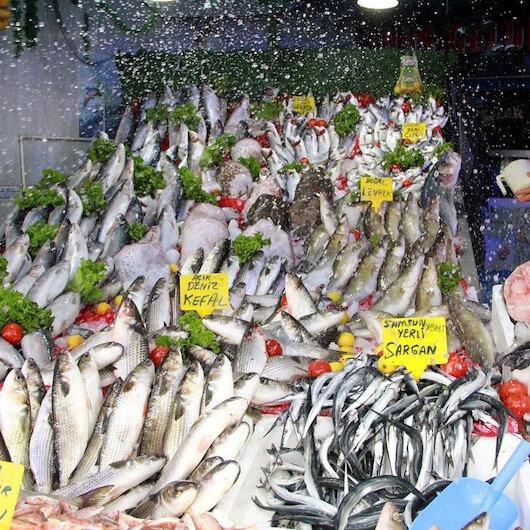 Turkey's fishery production slightly lower in 2018
