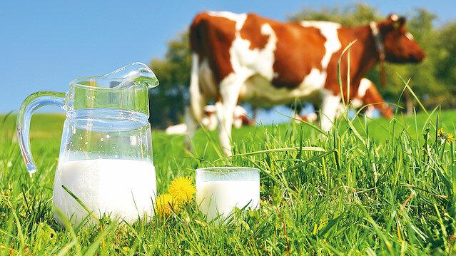 Et ve sütte kayıt dışı riski