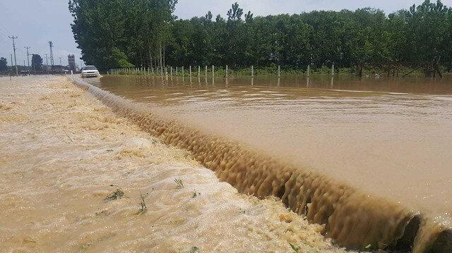 Sağanak yağışın etkili olduğu Terme'de yollar ve tarım arazileri sular altında kaldı.