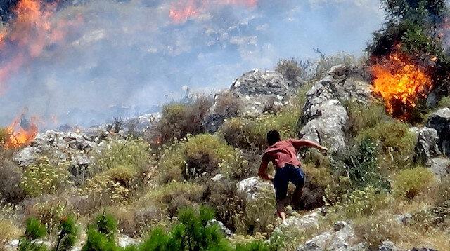 Balıkesir'de 10 hektar alan yangında zarar gördü
