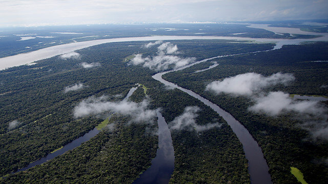 Better satellite images to help save rainforests, Norway says