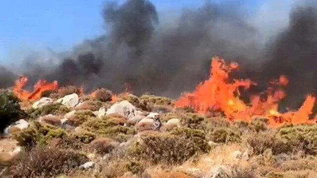 Makilik alanda yangın çıktı, ekipler müdahale ediyor.