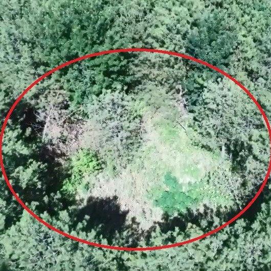 Kocaeli'de drone ile tespit edildi: Jandarma operasyon yaptı