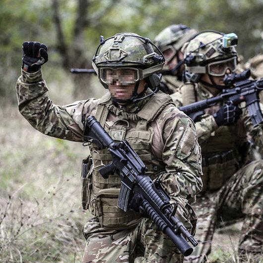 Amanos'ta operasyon: Silahlarıyla beraber etkisiz hale getirildiler