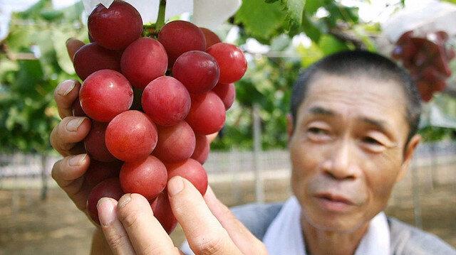 Kaynak: Amazon - Ruby Roman cinsi özel üzüm.