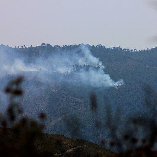 Suriye sınırındaki orman yangını