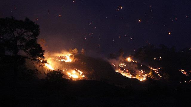 Dalaman'daki yangın 250 hektarlık alana yayıldı