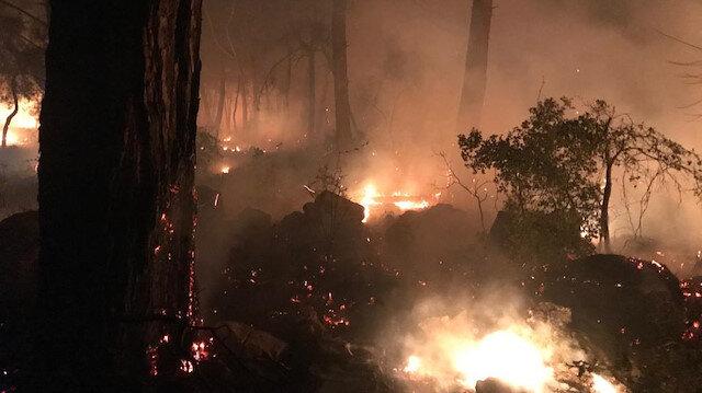 Dalaman'da orman yangını söndürülemiyor