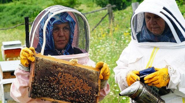 Bileziğini sattı, bir kovan arı aldı, şimdi paraya para demiyor