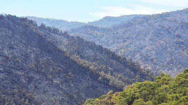 10 Ağustos'ta çıkan yangın Fethiye'ye sıçramıştı.