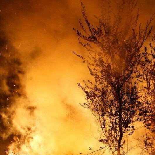 One wildfire remains active in central Portugal, 800 firefighters mobilized
