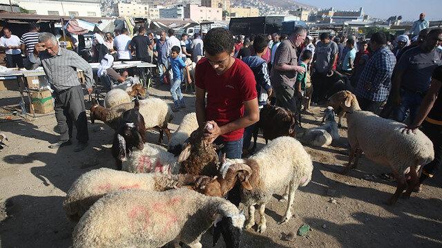 Batı Şeriada Kurban Bayramı hazırlıkları