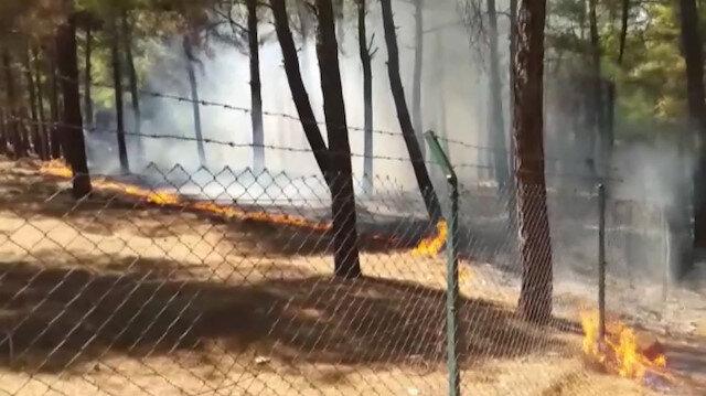 Kahramanmaraşta piknikçiler ormanı yaktı