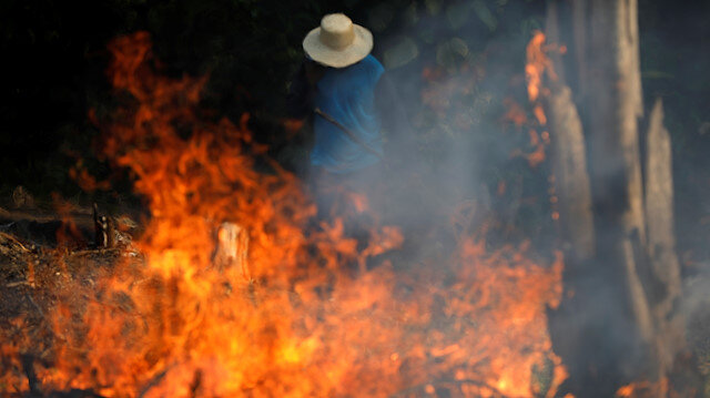 Amazon ormanları yangınlarla yok olma noktasında