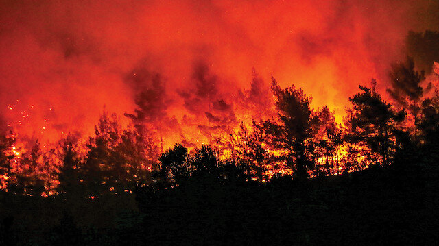 Son on yıllık istatistiklere göre, orman yangınlarının yüzde 12'sinin yıldırım, geriye kalan yüzde 88'inin ise insan kaynaklı olduğu belirtiliyor.