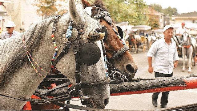 Faytonlar kalsın atlara iyi bakılsın
