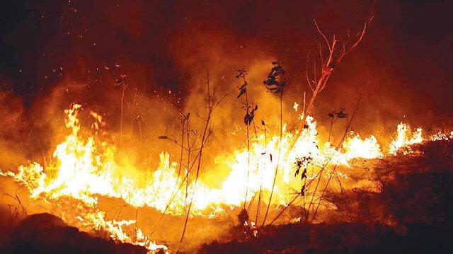 NASA'nın verilerine göre Angola'da 6 bin 902, Kongo Cumhuriyeti'nde ise 3 bin 395 yangın çıktı.