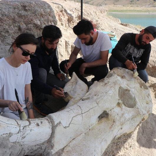 Kayseri'de 7 buçuk milyon yıllık fosil bulundu