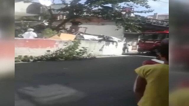 Çıktığı ağaçta bayıldı