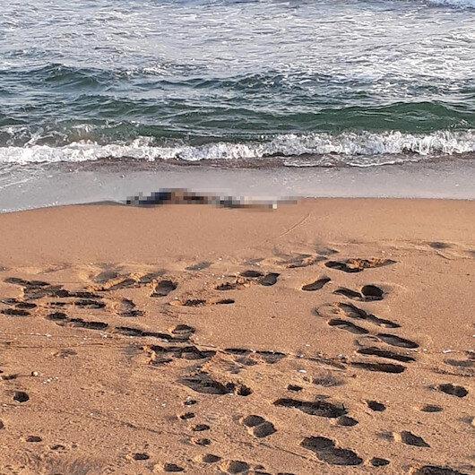 Sakarya'da sahilde iskelet bulundu