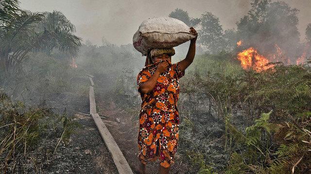 Orman yangınları, iki ülkeyi etkiliyor.