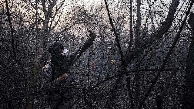 Bolivya orman yangınlarıyla mücadele ediyor.