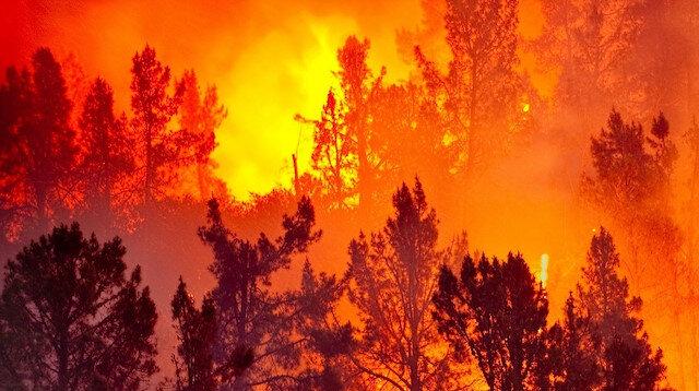 Orman yangınlarına 20 saniyede müdahale mümkün