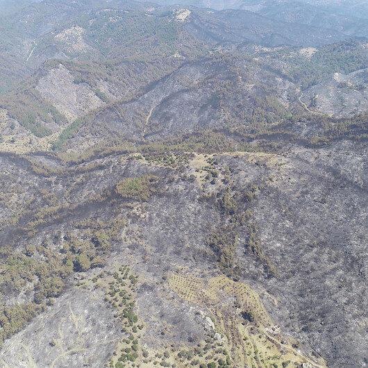 İzmir'de yanan orman alanı şubata kadar ağaçlandırılacak