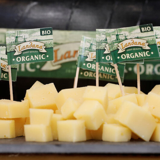 Half of Dutch cheese exports to be hit by US trade tariffs