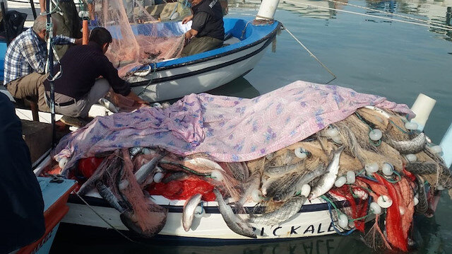 Çanakkale'de bir balıkçı tek seferde 1.5 ton kefal tuttu