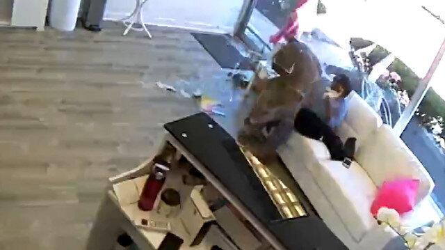 ABDde geyik kuaför salonuna daldı