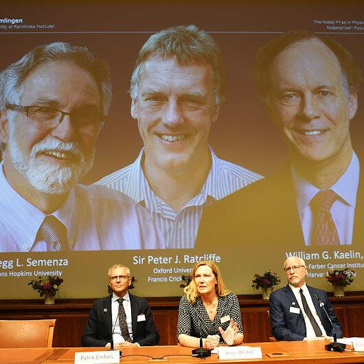 Three scholars win Nobel prize in medicine