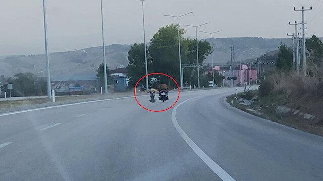Motosiklet üstünde yatarak giden sürücü tehlike saçtı