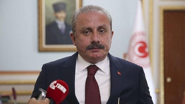 Meclis Başkanı Şentop'tan 'Barış Pınarı Harekatı' mesajı:  Türkiye'nin hedefi barış koridorunu tesis etmek