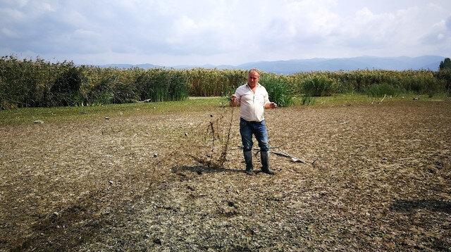 İznik gölü çekildi: Balık ağları ortaya çıktı