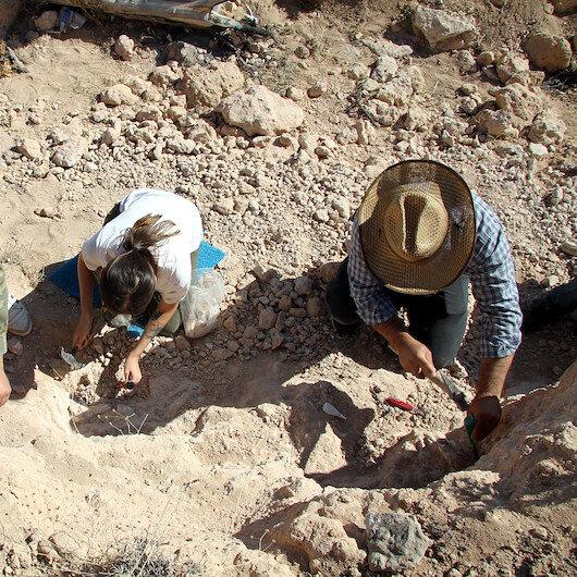 Kayseri'de 8 milyon yıllık at zürafa gergedan fosilleri bulundu