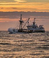 Yunan göstericiler göçmenkurtarma gemisini taşladı