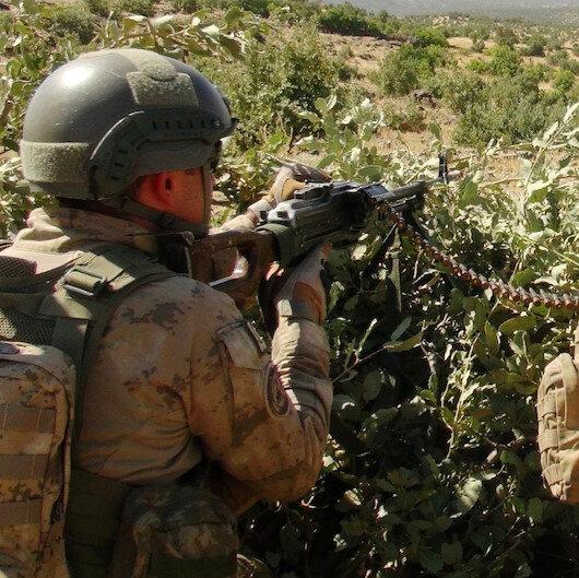 Tunceli'de düzenlenen operasyonda bir terörist etkisiz hale getirildi