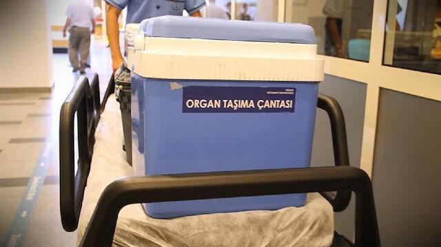 Türkiye'den dünyaya organ nakli eğitimi: 78 ülkeden bin 669 kişiye eğitim verildi