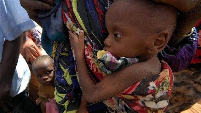 2.4M people food insecure in Africa's Sahel region: UN