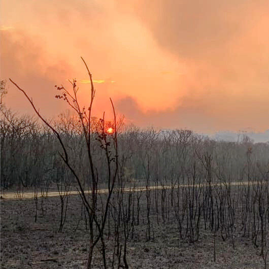 New front opens in Australian bushfires, power cut to thousands