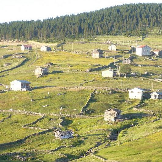Trabzon'daki Barma Yaylası Turbalığı 'kesin korunacak hassas alan' ilan edildi
