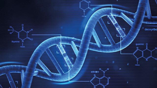 Genlerinizin size mesajı var
