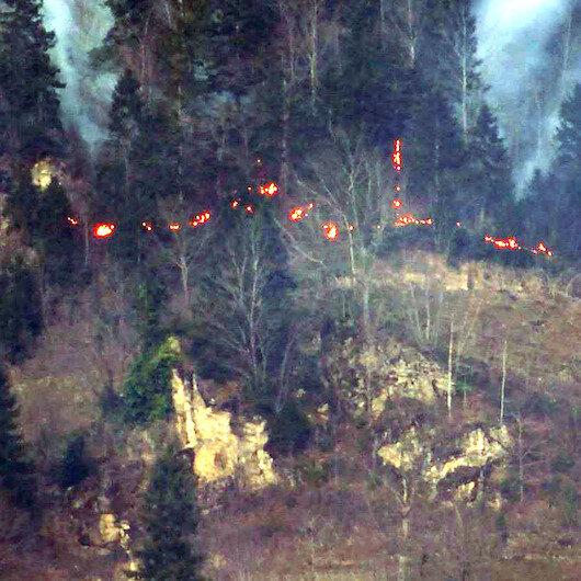Karadeniz'de orman yangını sayısı 69'a yükseldi: 4 il yangınla boğuşuyor