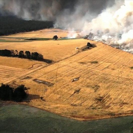Kanguru Adası'nın üçte biri yandı: Fotoğrafları NASA yayınladı