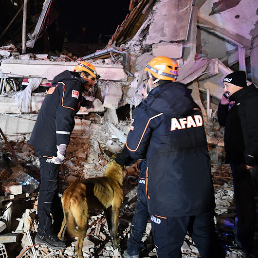 Diplomatic missions condole with Turkey over earthquake