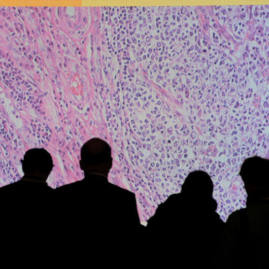 60% rise estimated in cancer cases globally: WHO