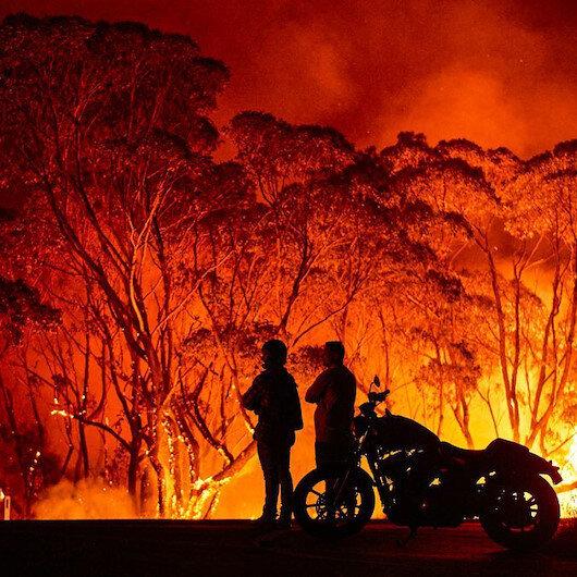 Yangınlar Avustralya ormanlarının yüzde 21'ini yok etti